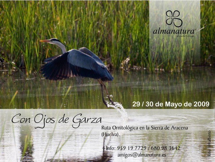 Imagen Ruta ornitológica