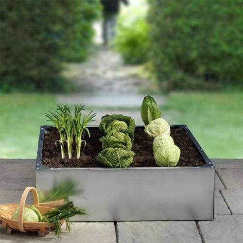 Huertos compartidos, agricultura ecológica y comunitaria