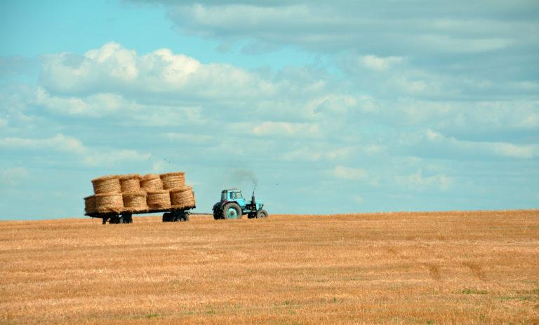 ¿Por qué es importante fijar población al mundo rural?