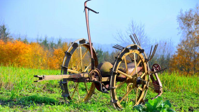 Estudio participativo para la identificación de nuevos yacimientos de empleo rural