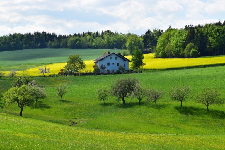 Experiencias seleccionadas de buenas prácticas en Turismo Rural