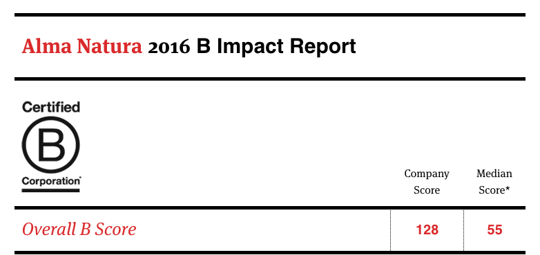 B_Impact_Report