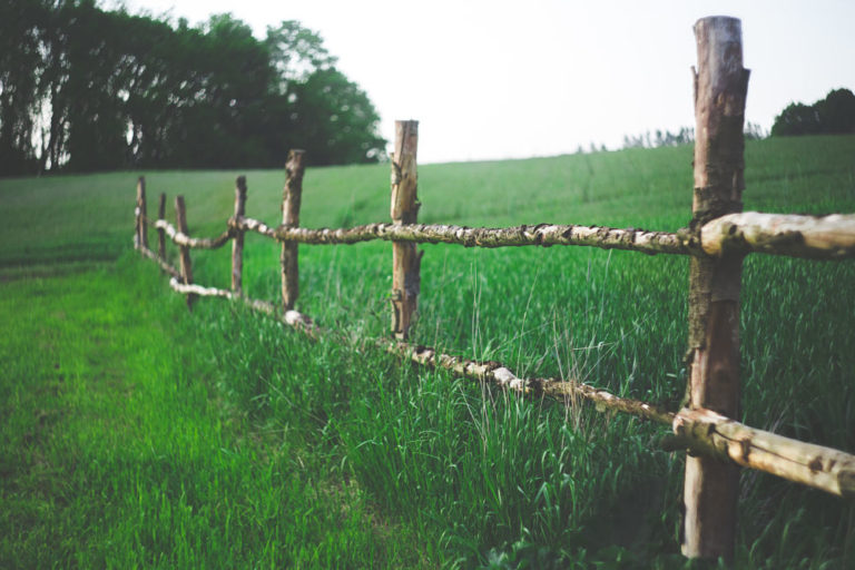 Medidas para facilitar el relevo generacional en el medio rural