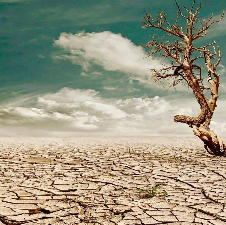 Cambio climático en zonas rurales