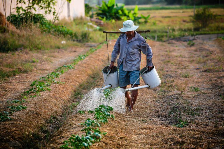 Smart Rural: Los pueblos conectados pierden menos población