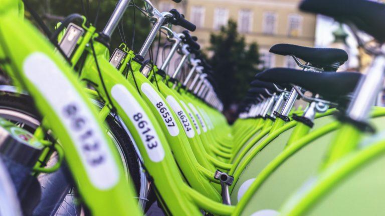 Piensa en verde o muere: la oportunidad del empleo verde