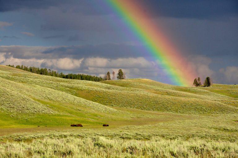 ¿Y si celebramos el Orgullo en las zonas rurales?