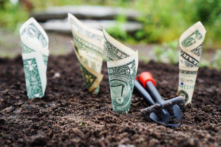 Políticas fiscales para luchar contra la despoblación rural