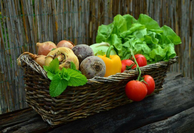 Grupos de Consumo Agroecológicos