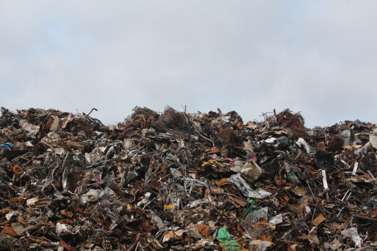 Proyecto Libera: Naturaleza sin basura