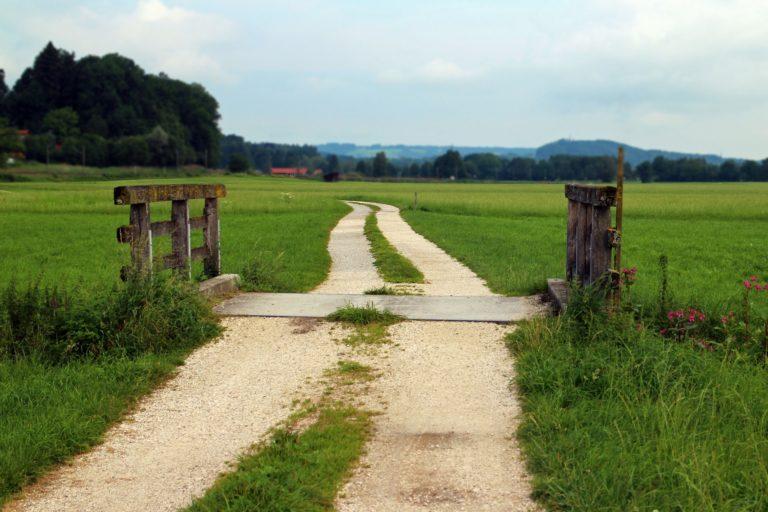 Análisis de situación de la sociedad rural Española
