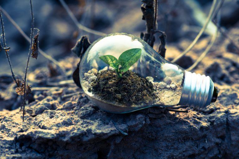 ¿Qué puede hacer la empresa por el medio ambiente?