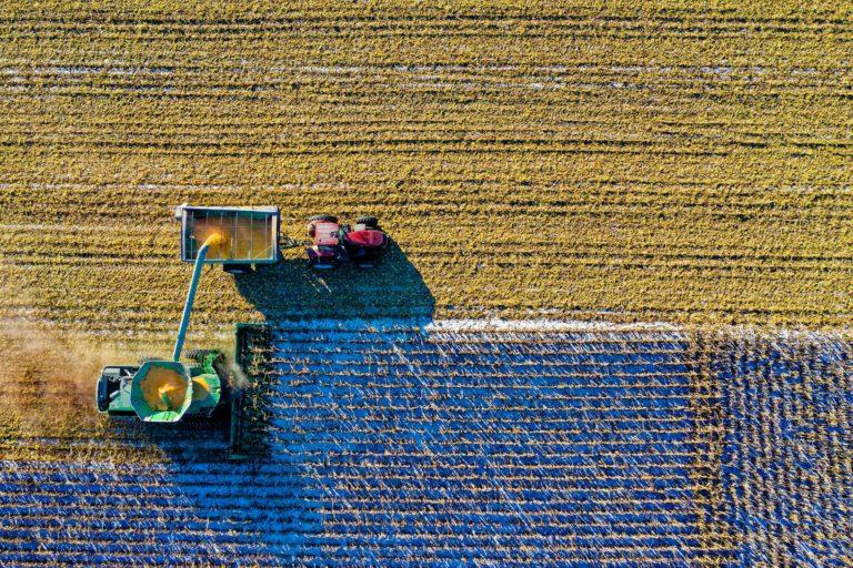 Medidas para los sectores más castigados por el Covid-19 en el mundo rural