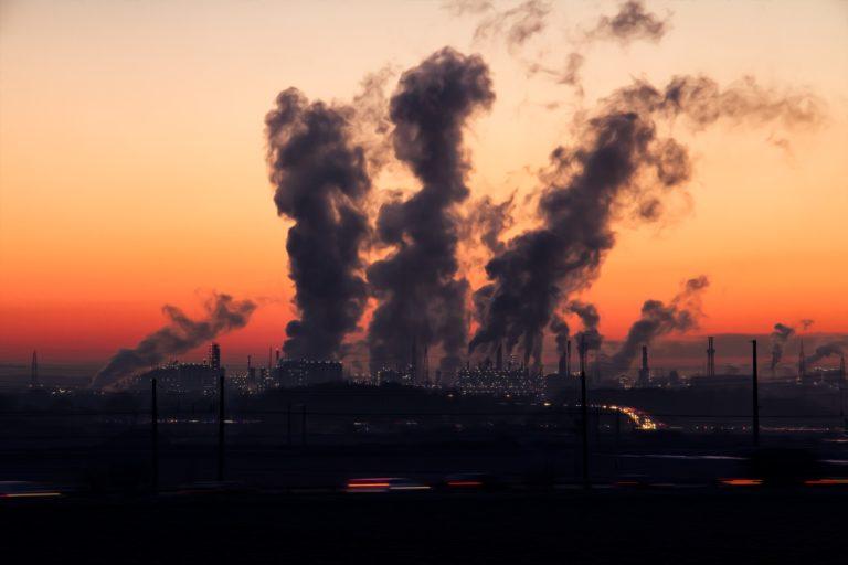 B Corp se convierte en una alternativa emergente para superar la crisis económica y climática