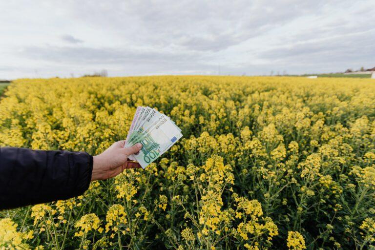 ¿Soluciona el dinero el problema rural?